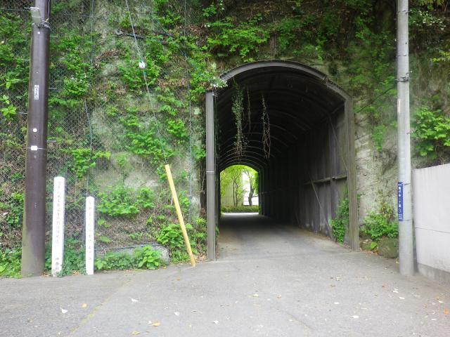 04)   18.04.24 入館せずに、「鎌倉歴史文化交流館」の門番?ネコを撫で撫で & トンネルの先を確認