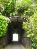 03-1)   18.04.24 入館せずに、「鎌倉歴史文化交流館」の門番?ネコを撫で撫で & トンネルの先を確認