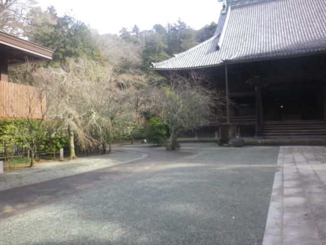 02) _ 19.02.07 立春直後の鎌倉「妙本寺」
