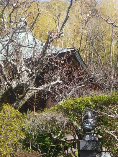 03-1) _ 19.02.07 立春直後の鎌倉「浄光明寺」