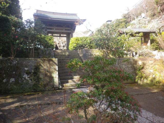 02-1) 手前の馬酔木を撮ったつもり _ 19.02.07 立春直後の鎌倉「海蔵寺」