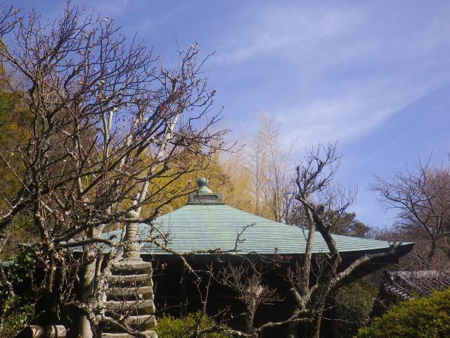 02-1) _ 19.02.07 立春直後の鎌倉「浄光明寺」