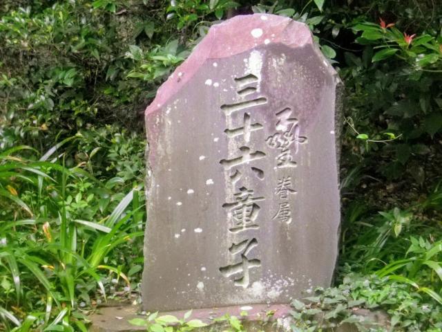 image from lh3.googleusercontent.com