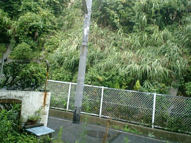 01)今日は雨だった。ただ其れだけを記録するするために撮った、意味の無い写真。