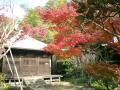 05)鎌倉市扇ガ谷「浄光明寺」