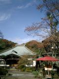 07)鎌倉市扇ケ谷「海蔵寺」