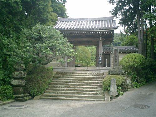 02)    08.06.28 鎌倉「浄妙寺」紫陽花の季節