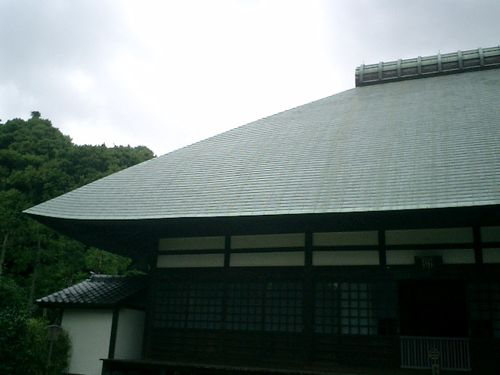 12)  08.06.28 鎌倉「浄妙寺」紫陽花の季節