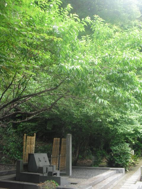24) 土光家墓所。至近距離正面からを憚って、遠方から撮影させていただきました。