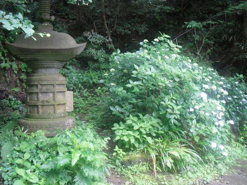 28) 「安国論寺」 _ 鎌倉市大町。